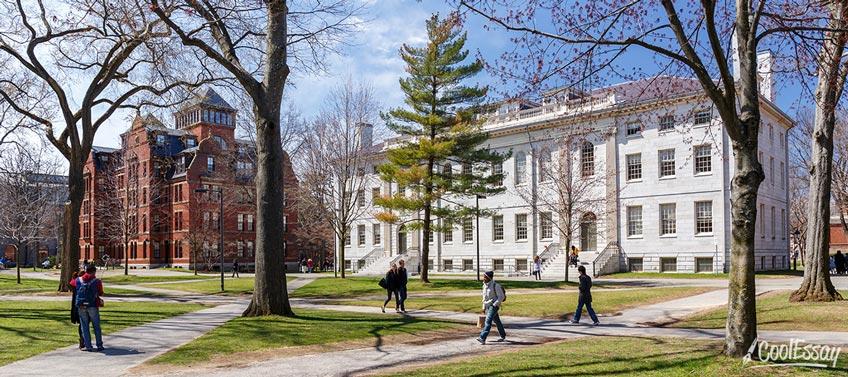 Undergraduates in Park